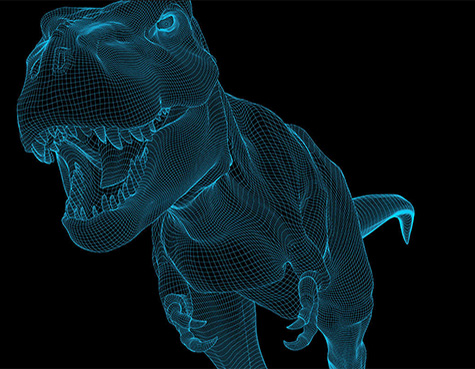 Line art of a T-Rex