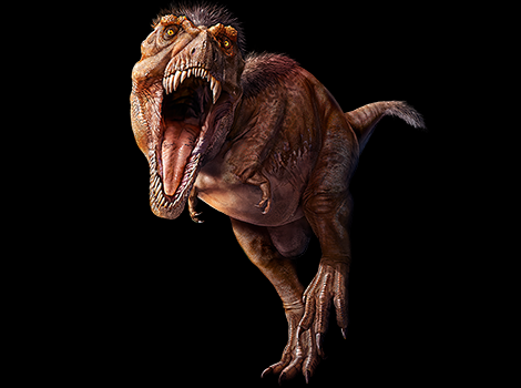 Illustration of T. rex.