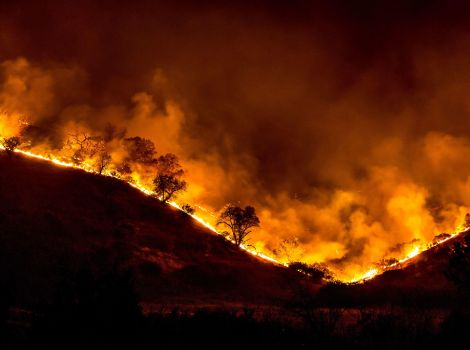 All the trees that top a sloping mountain ridge are on fire.
