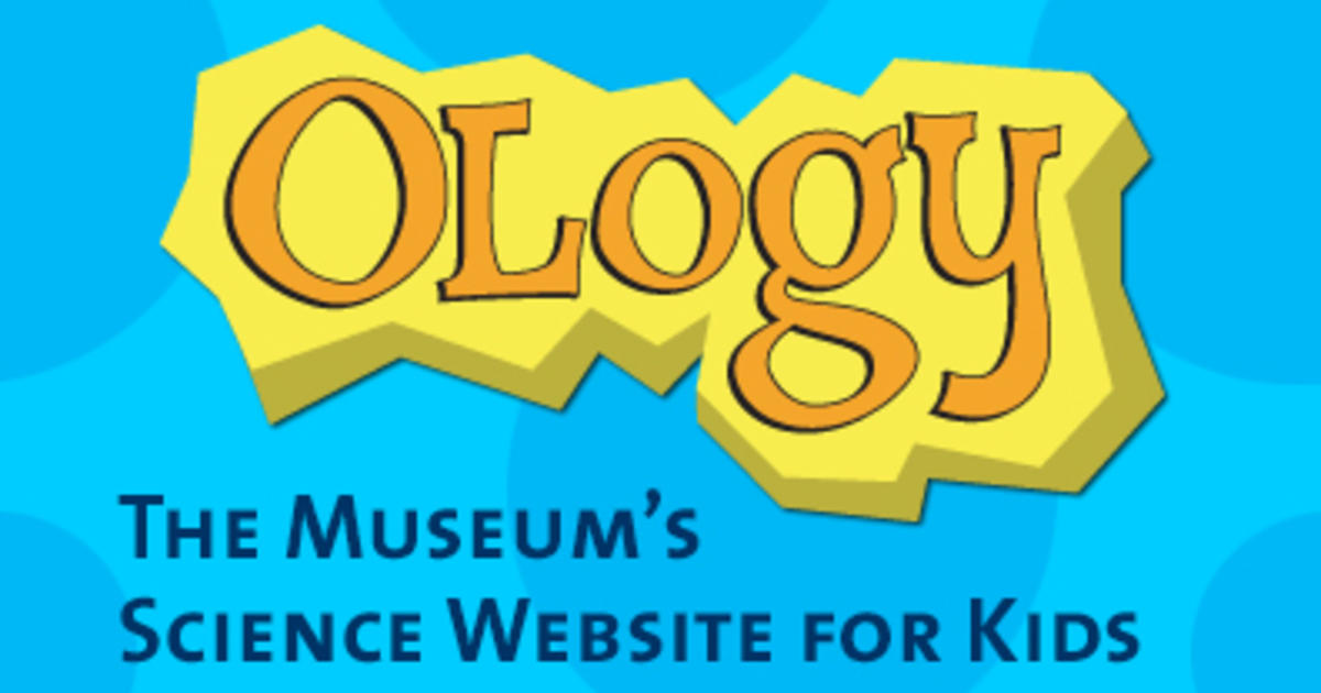 OLogy: The Museum's Science Website for Kids