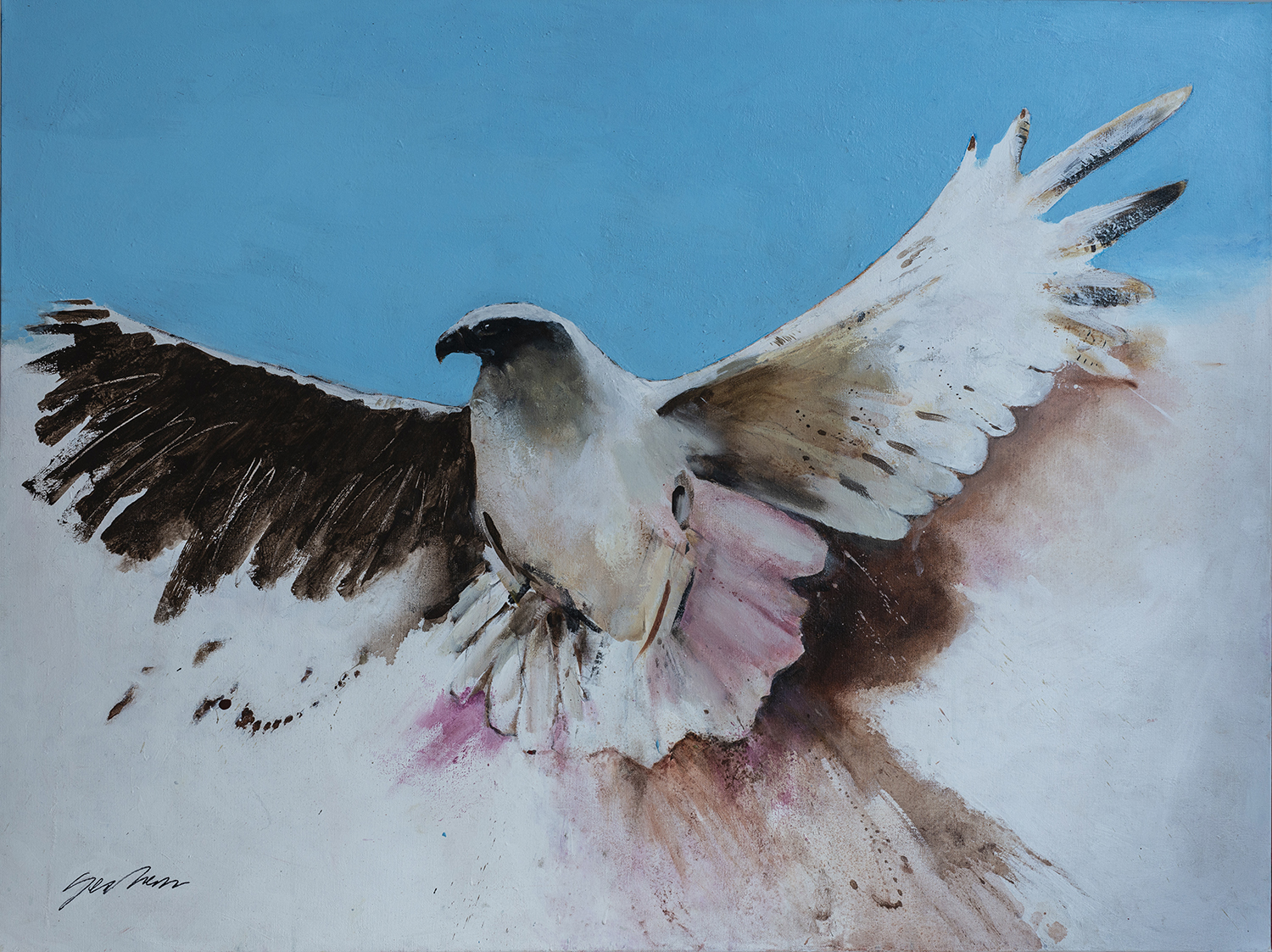 Painting of a white and black bird with pink-tipped feathers against a blue and white background.
