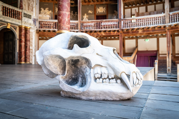 [IMAGE] A bear skull lays on an empty Globe stage.